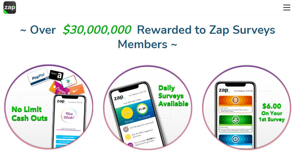 Zap Survey